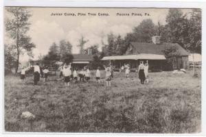 Children Play Pine Tree Camp Pocono Pines PA postcard