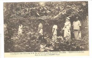 Congregation des Soeurs de N.-D. des Aportes pou les Missions Africaines, Dan...
