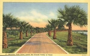 Beautiful Palm Drive - Lower Rio Grande Valley TX, Texas - Linen
