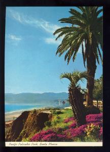 Santa Monica, California/CA Postcard, Pacific Palisades Park, Near Mint!
