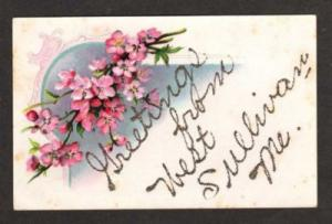 ME Greetings From WEST SULLIVAN MAINE Postcard Flowers
