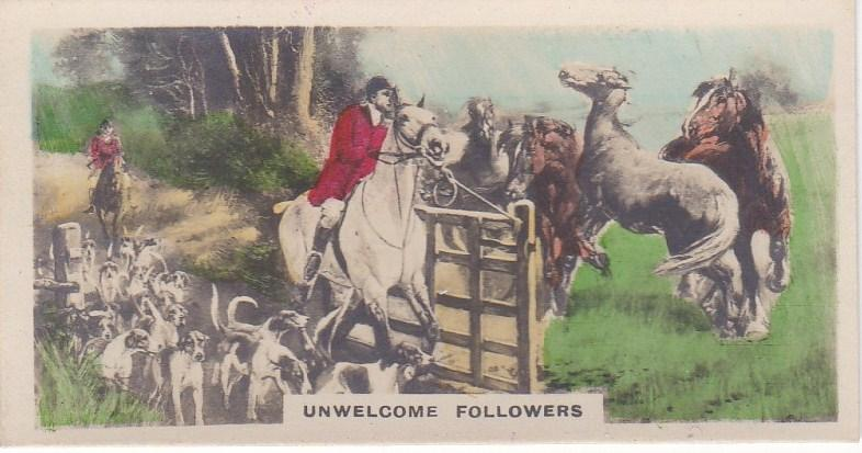 Cigarette Cards Cavanders CAMERA STUDIES Real Photos No 4 Unwelcome Followers
