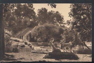 France Postcard - Nimes (Gard) - Jardin De La Fontaine    RS16335