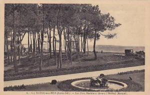 Le Pins Maritimes Devant l'Hotel Royal, La Baule sur Mer (Loire Atlantique), ...