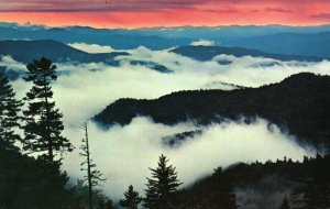 Great Smoky Mts. Nat'l Park, NC, Above the Clouds at Sunrise,1955 Postcard g8926