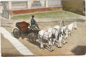 Carriage drawn by four white horses Nice old vintage french postcard