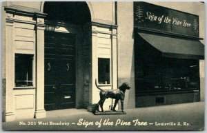 Louisville, Kentucky Postcard SIGN OF THE PINE TREE Antique Furniture Store