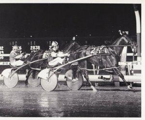 MEADOWLANDS, Harness Horse Race, MARCH STREAKER winner