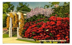 FL - A Garden Gate Scene