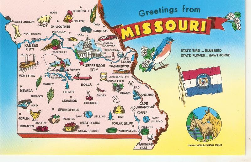 Greetings from Missouri. Map. Horses Nice American pc 1950s