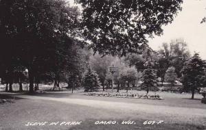 RP; Scene in Park, Omro, Wisconsin, PU-1962