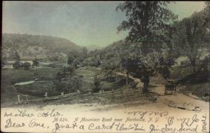 Mountain Road Near Northville NY c1910 Postcard