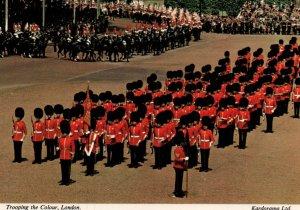 Trooping the Colour,London,England,UK BIN