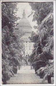 Capitol from Botanical Gardens, Washington DC