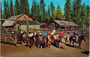 Watch Lake Lodge Lone Butte BC 70 Mile House Trail Rides Cabins Postcard D61