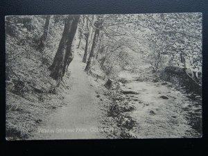 Scotland Edinburgh COLINTON View in Spylaw Park - Old Postcard by Alex Hutcheson