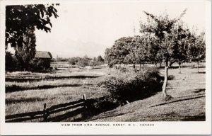 Haney BC 3rd Avenue near Maple Ridge Real Photo Postcard F87 *as is