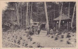 TEmple / Shrine in forest , Japan , 10-30s