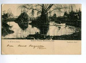 144848 NEW ZEALAND MASTERTON Salmon Ponds Vintage postcard