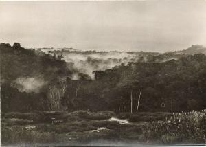 French Guiana Expedition Tumuc-Humac, Panorama (1950s)