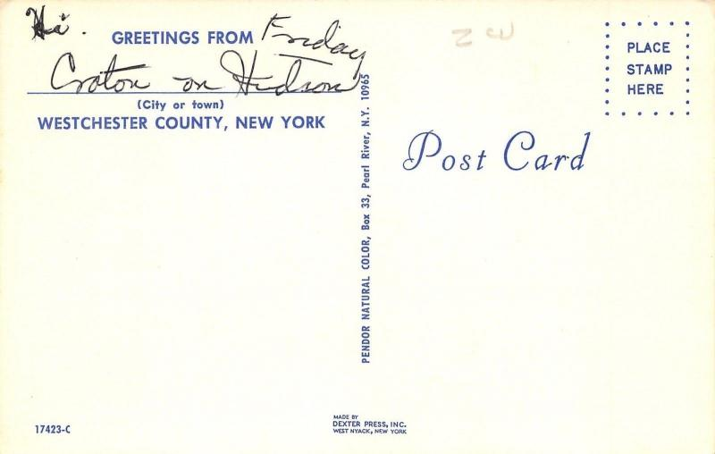 Westchester County New York~Map Postcard~Highways~Snow Ski~Fishing~Compass~1960s