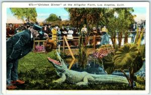 LOS ANGELES, California CA   Chicken Dinner at ALLIGATOR FARM c1910s Postcard