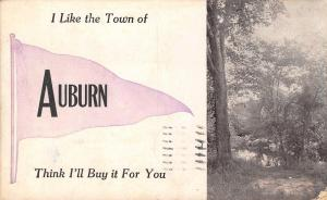 I Like the Town of Auburn Indiana~Think I'll Buy it For You~1912 Pennant PC