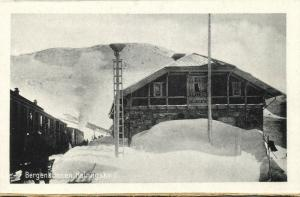 norway norge, HALLINGSKEID, Bergensbanen, Railway Station, Train (1920s)