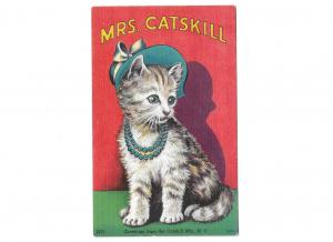Mrs. Catskill Cat Wearing pearls and hat Greetings from the Catskill Mts. N Y