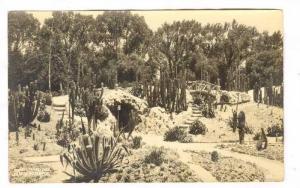 RP, Jardin Botanico, Nopales, Chapultepec, Mexico, 1920-1940s