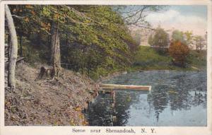 New York Scene Near Shenandoah 1916