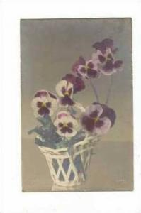 Pansy Flowers, in basket, 00-10s