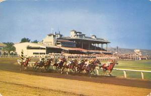 Tijuana, Mexico Caliente Race Track Horse Racing Postcard unused