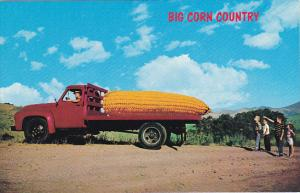 Exageration Large Corn On Truck