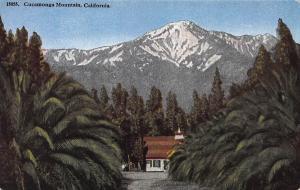 Cucamonga Mountain, California, Early Postcard, Unused