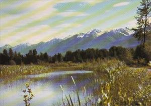 Canada British Columbia Golden Columbia River Sloughs