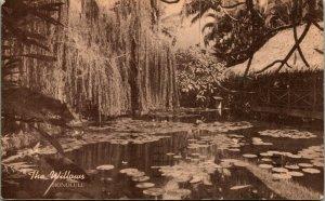 Honolulu Hawaii The Willows Restaurant 1910s Postcard w 1950 Airmail Postmark