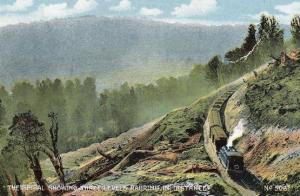 Ruarimu Train New Zealand Spirals Three Levels Railway Old Postcard