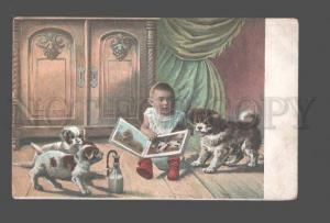 082765 Kid on POT & Dogs PUPPY Vintage PHOTO color PC