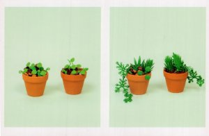 Flowerpot Pot Plants Gardening Watering Can Childrens Lego Display Postcard