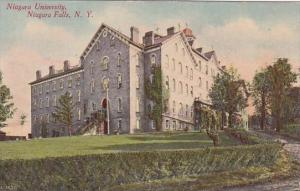 New York Niagara Falls Niagara University