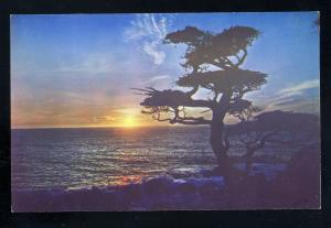 Monterey, California/CA Postcard, Sunset On Monterey Coast