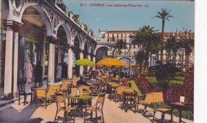 Cannes (Alpes Maritimes), France, 1900-1910s ; Les Galeries Fleuries