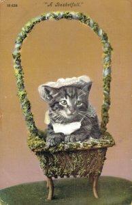 Kitten Vintage Postcard A Basketfull Vintage 03.33