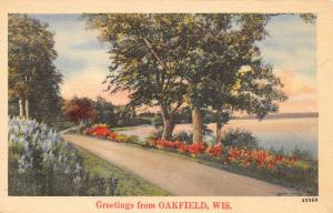 Oakfield Wisconsin~Drive Along Campground Creek~1940s Linen Postcard