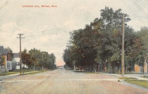 Willmar Minnesota~Litchfield Avenue Homes~Wide Dirt Road~1908 Postcard