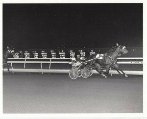 MEADOWLANDS Harness Horse Race , AMERICAN FREEDOM winner, 1984