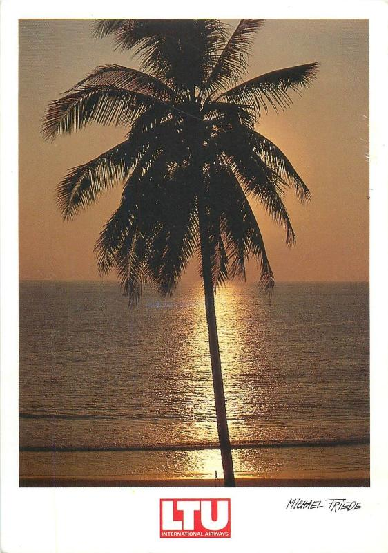 Seascape sunset palm tree photo postcard Michael Friede LTU Airways advertising