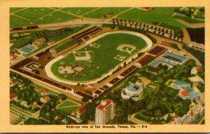 Florida Tampa Birds Eye View Of Fairgrounds Dexter Press