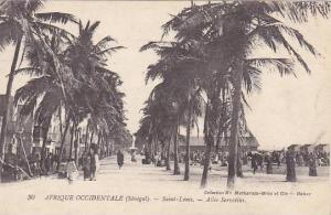 Senegal Saint-Louis Allee Servatius